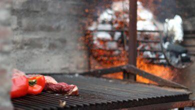 Rostlinné alternativy masa nejsou pouze burgery. Dočkáme se i steaků