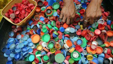 Biologicky rozložitelný plast odolává překvapivě vysokým teplotám