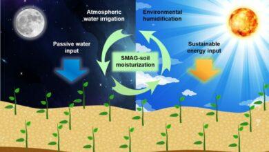 Samozavlažovací půda je o 20% efektivnější. Může představovat revoluci v zemědělství