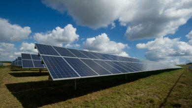 Kapsaicin by mohl pomoci při zefektivnění konverze energie u solárních panelů