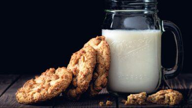 Izraelský startup Remilk vyrábí mléčné výrobky bez chovu hospodářských zvířat