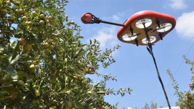 Kubota a Tevel vyvíjejí autonomní drony pro sběr ovoce